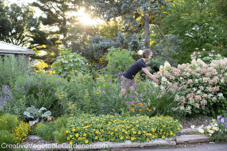 Creative Vegetable Gardener:Two Quick No-Dig Ways to Make a Flower Bed